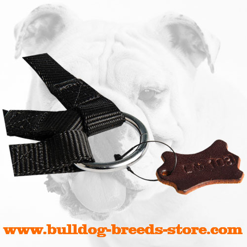High Quality O-ring of a Triple Nylon Dog Coupler for Walking Bulldogs
