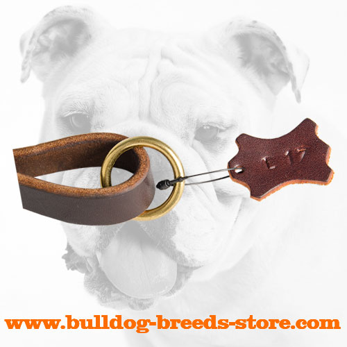 O-ring on Handle of Walking Leather Bulldog Leash