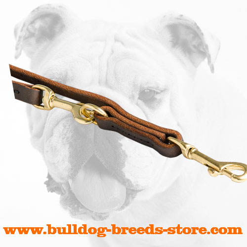 Strong Snap Hook on Leather Bulldog Leash for Patrolling