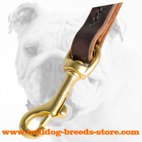 Snap Hook on Hand-Made Training Leather Dog Leash for Bulldog