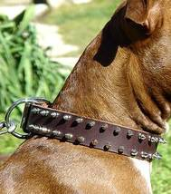APBT Leather Spiked Dog Collar - 2 Rows of spikes