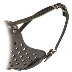 Adjustable Leather Bulldog Muzzle with Strong Straps