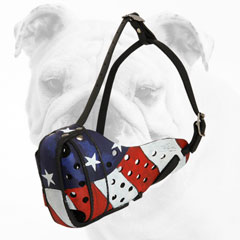 Unique Painted Leather Dog Muzzle for Bulldog