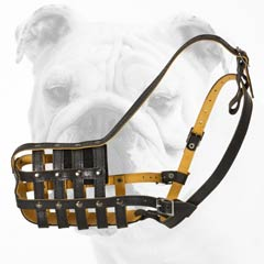 Comfortable Walking Leather Bulldog Muzzle