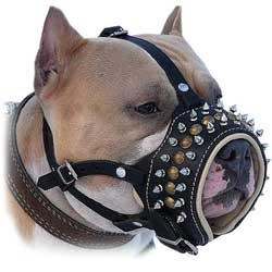 Stylish Walking Leather Bulldog Muzzle