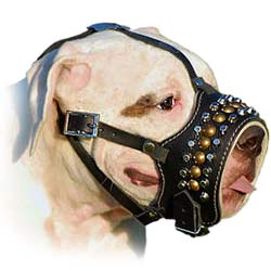 Safe Leather Bulldog Muzzle