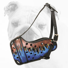 Painted Training Leather Bulldog Muzzle with Soft Padding