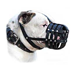 Quality Walking Leather Bulldog Muzzle