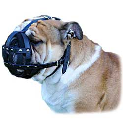 Leather Bulldog Muzzle with Perfect Air Flow