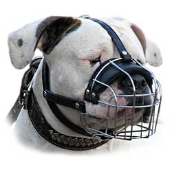 Strong Walking Wire Cage Bulldog Muzzle