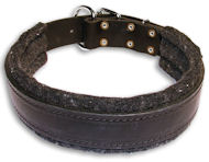 Bulldog Padded Black dog collar 20 inch/20'' collar - C24