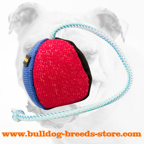 Bite Bulldog Ball Made of French Linen