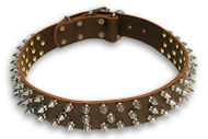Spiked Brown collar 26'' for Bulldog /26 inch dog collar - S44