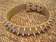 spiked leather dog collar