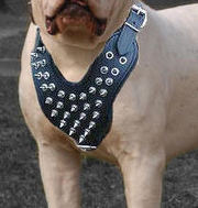 Leather Spiked Dog Harness- Deluxe custom Leather Harness